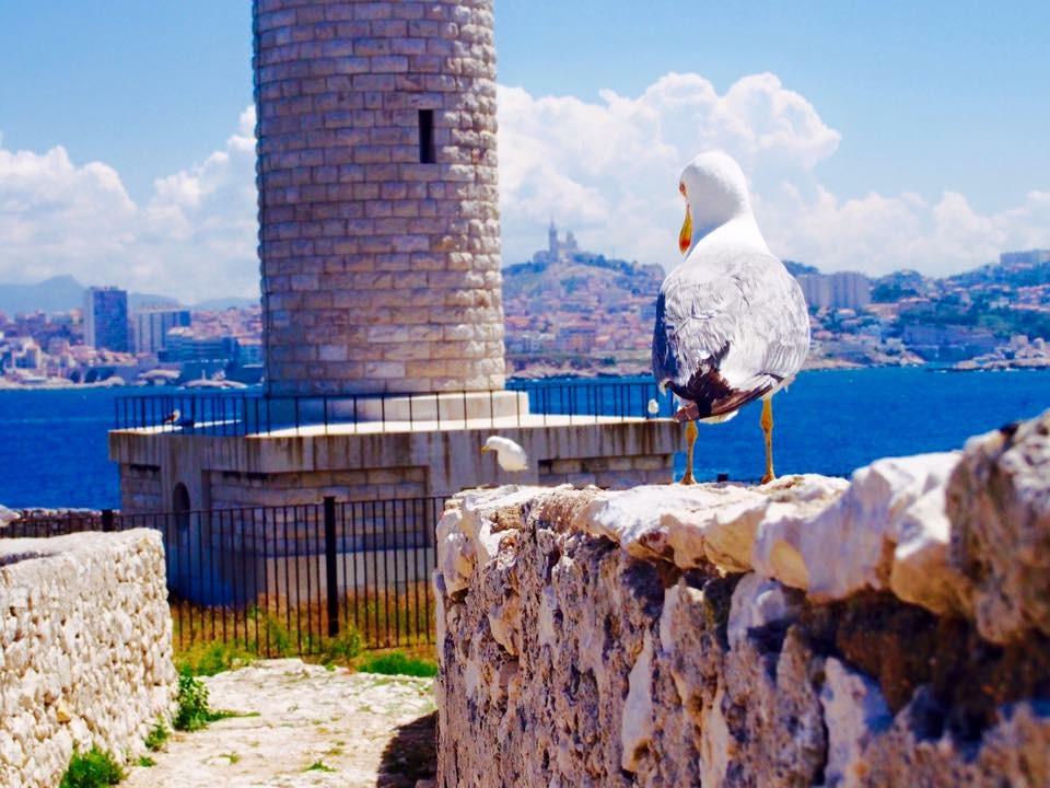 マルセイユ:夏におすすめの旅行スポット